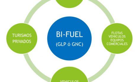¡Somos instaladores de GLP para el automóvil! ¿Lo sabias?
